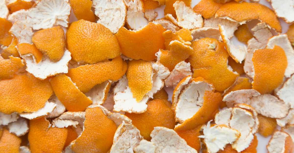Casca de laranja contra os pernilongos