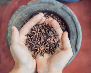 O anis estrelado é uma especiaria que há muito tempo vem sendo utilizada para fins medicinais.