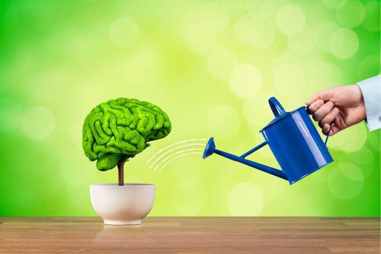 Quebrar a rotina é um dos exercícios para melhorar a memória