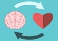 Dicas para desenvolver a inteligência emocional