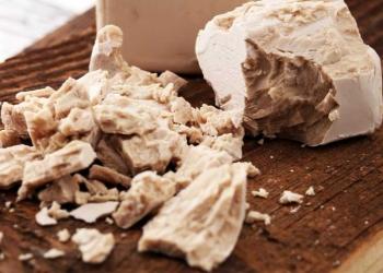 levedura de pão