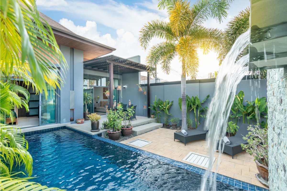 piscina pequena cercada por vegetação
